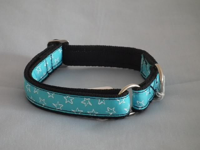 Indi-Dog - Made to order collars, lead, harnesses & more! DSCF8541Copy