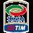Calcio italiano