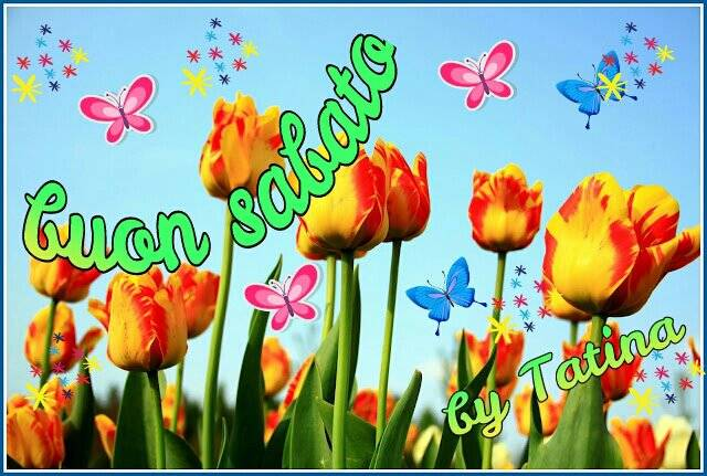 ** Un saluto, un pensiero, un abbraccio ** Salutiamoci!! - Pagina 5 580846_359590297444437_94536766_n