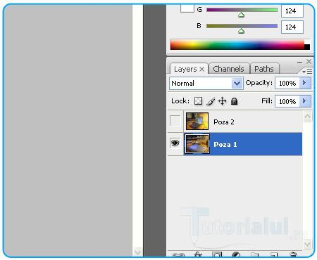 Tehnica Monitor Transparent 5