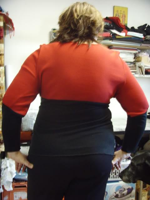Provocarea I, la croitorie: maleta/ helanca  - Pagina 3 SNV33856