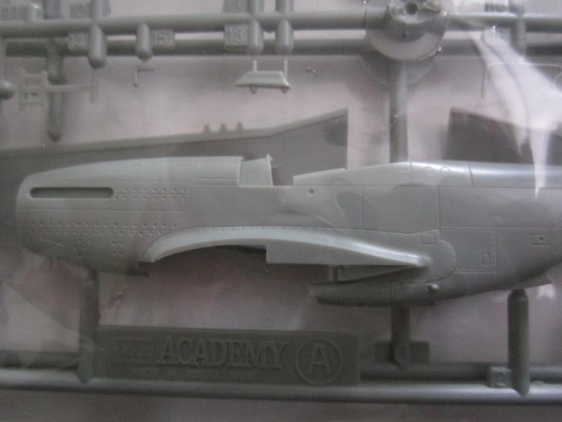 F-51 Mustang Academy 1/72 IMG_5450_zpssbfqnccb