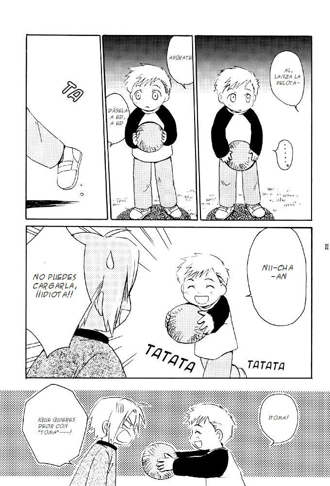 fma brothers manga 12