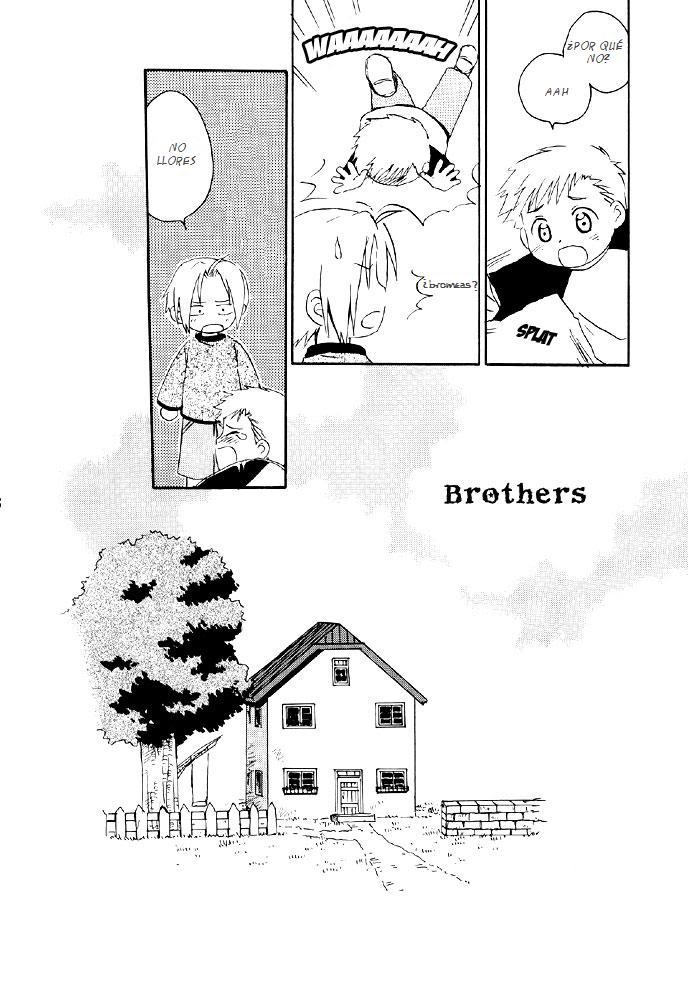 fma brothers manga 7