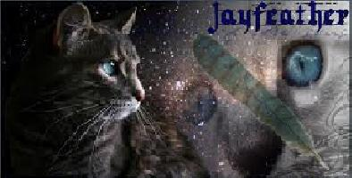The Writer's Club! Jayfeather