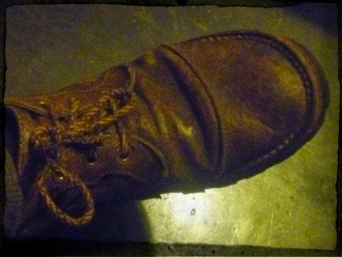 Courteney Boots P1090491_zps686f76cf-1_zps15310423