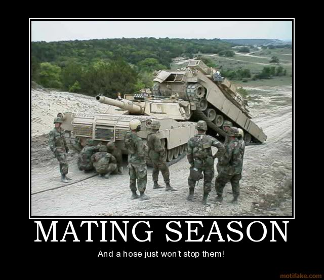 The Funny Side of the Military  Mating-season-tanks-mating-where-ap