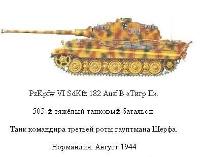 King Tiger 12-1_zps6fb14622