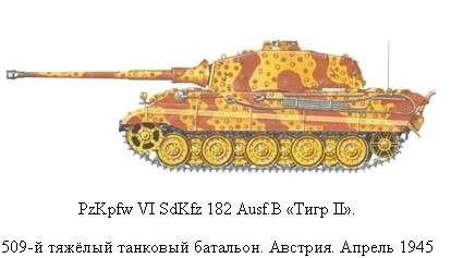 King Tiger 14_zps562a07c7