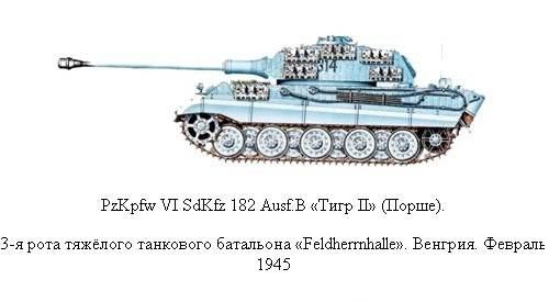King Tiger 24_zpsee2043a1
