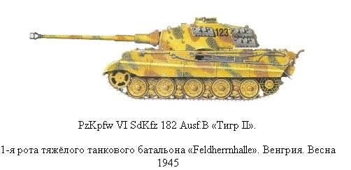 King Tiger 29_zpsc20def03