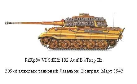 King Tiger 8-1_zpsb600cc82
