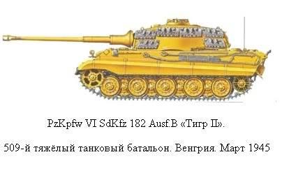 King Tiger 9-1_zpse8d236d3