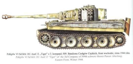 The Tiger I 3rd_509_311_zps764a3b9e