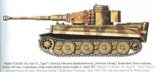The Tiger I Goring_R02_zps4290cb4c