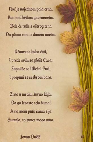 romantika  - Page 3 Ducic1_zps91de7a24