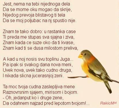 Upotrbljena romantika - Page 5 Rakic11_zpsda140734