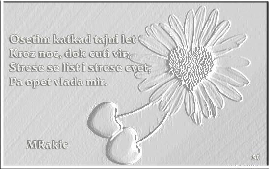 Upotrbljena romantika - Page 6 Rakic_zps0e0f159d