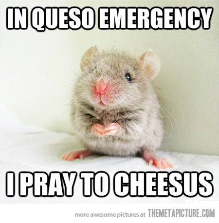 Holy Mouse ;) Funny-mouse-queso-cheesus_zpsa52a0a0a