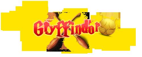 Registro de Jugadores de Quidditch GryffindorQuidditch