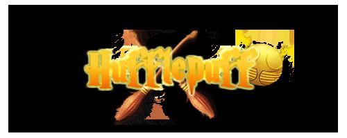 Registro de Jugadores de Quidditch HufflepuffQuidditch