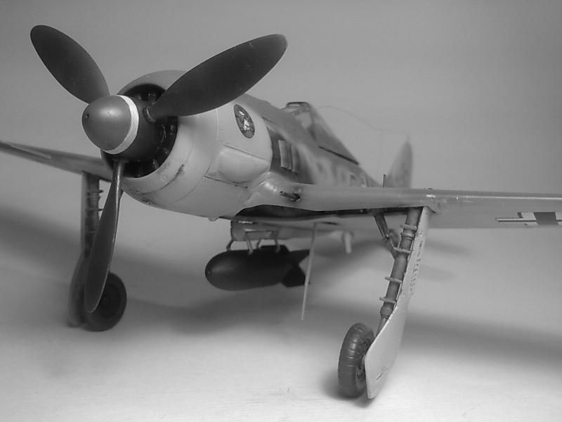 Fw-190G2 I/SG1 Promodeller 1/48 Imagen6954