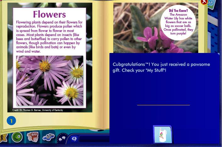 read 2014 gifts May8 2014PawsFurNatureFlowers_zps8e65bd24