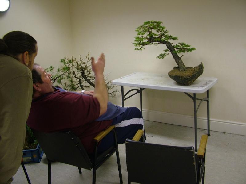 Rob Atkinson's Spruce (Picea Abies) in an Erik Križovenský pot Dscf7623_zpsd9136aec