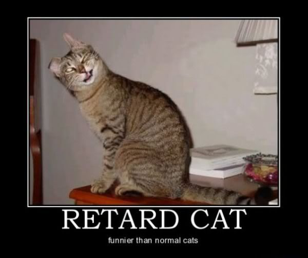 Motivational Pictures of the day - Page 7 Retard_cat