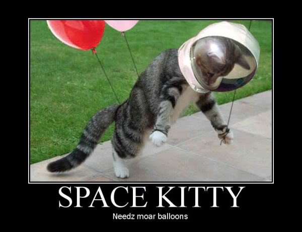 Motivational Pictures of the day - Page 7 Space_kitty