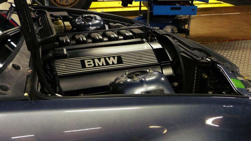 Schimpy - Bmw 320 turbo touring - Sida 3 P1030374