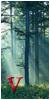 Foro de las Valquirias [Confirmación] 50x100