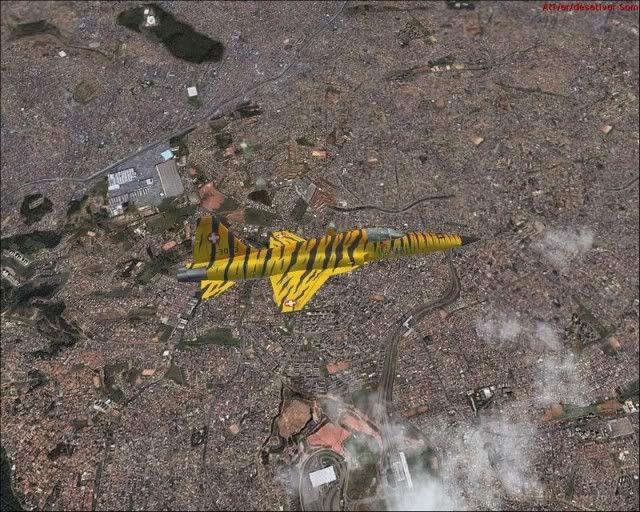 Flight Simulator fotos Avs_106