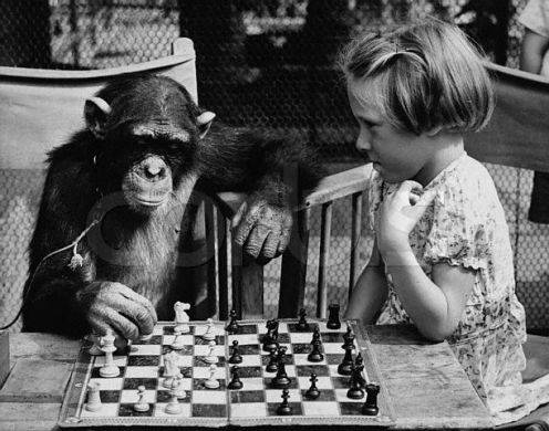 The New Chess Thread! MonkeyChess