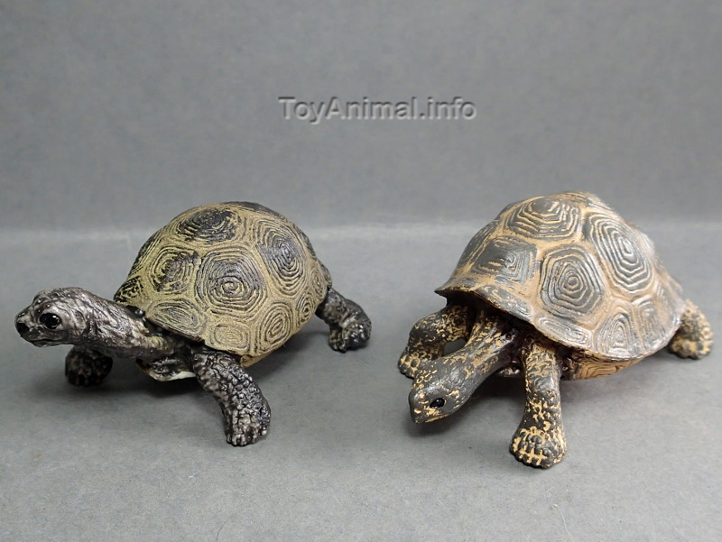 My first Eikoh models, - but I hope they are not the last ;-) EIKOHturtleCompare_zps9457aa05