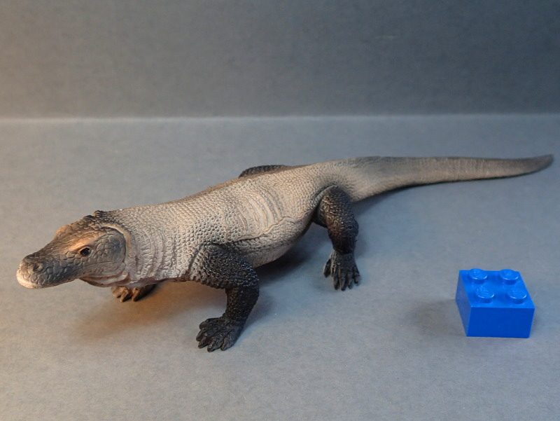 Mojo Komodo dragon, - new for 2014. PA010030_zpsb817bf12