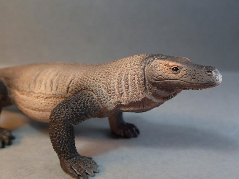 Mojo Komodo dragon, - new for 2014. PA010032_zps3c71edf3
