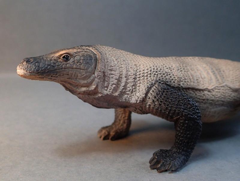 Mojo Komodo dragon, - new for 2014. PA010034_zpsa86a3889