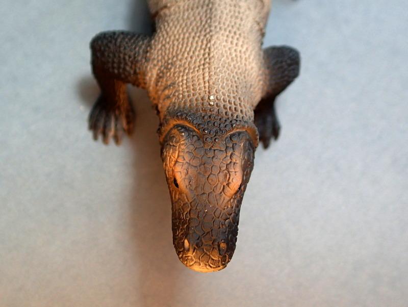 Mojo Komodo dragon, - new for 2014. PA010045_zps88cccbe6
