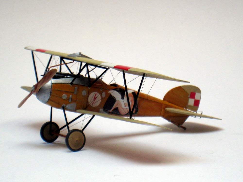 Oeffag D.III series 253 - 13-th Fighter Squadron Poland 1920 - RODEN 1/72 IMG_6173