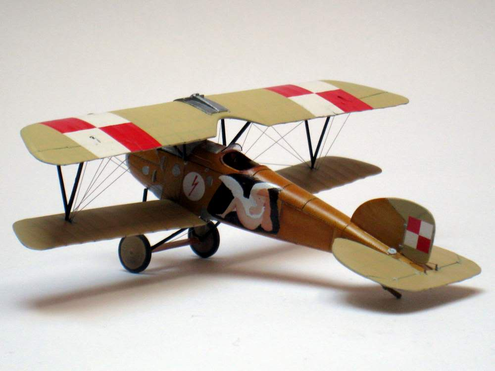 Oeffag D.III series 253 - 13-th Fighter Squadron Poland 1920 - RODEN 1/72 IMG_6174