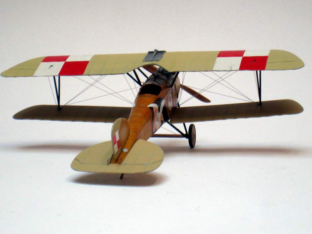 Oeffag D.III series 253 - 13-th Fighter Squadron Poland 1920 - RODEN 1/72 IMG_6175