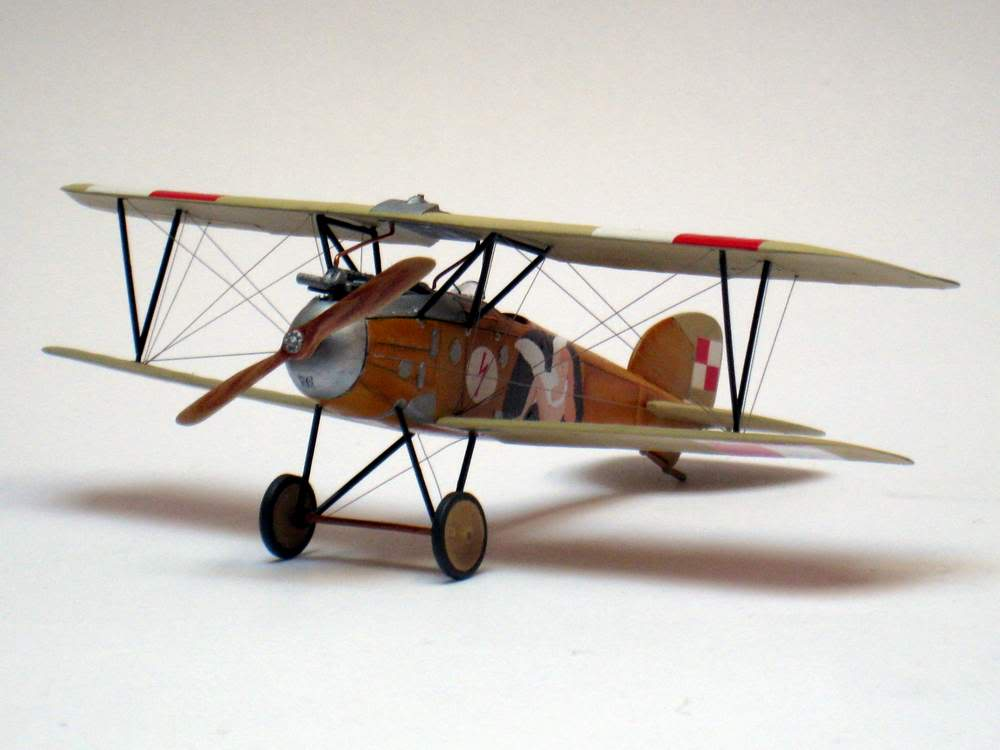 Oeffag D.III series 253 - 13-th Fighter Squadron Poland 1920 - RODEN 1/72 IMG_6176