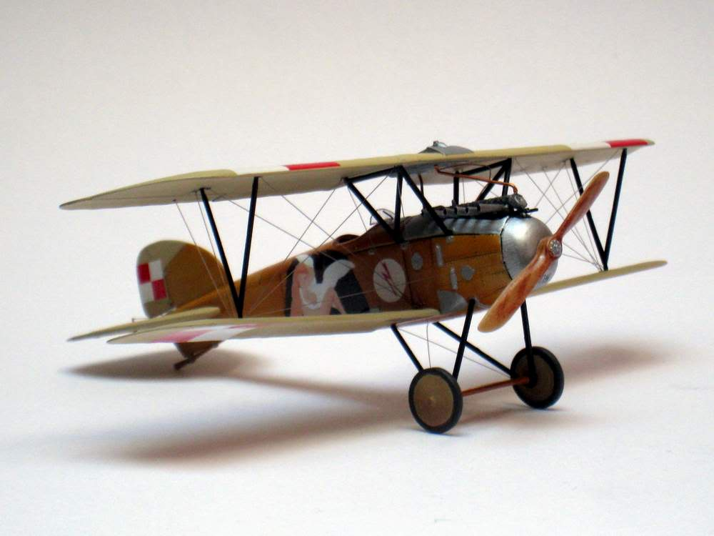 Oeffag D.III series 253 - 13-th Fighter Squadron Poland 1920 - RODEN 1/72 IMG_6177