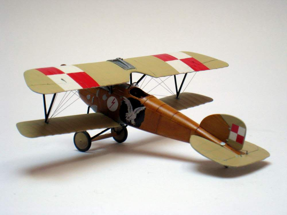 Oeffag D.III series 253 - 13-th Fighter Squadron Poland 1920 - RODEN 1/72 IMG_6179