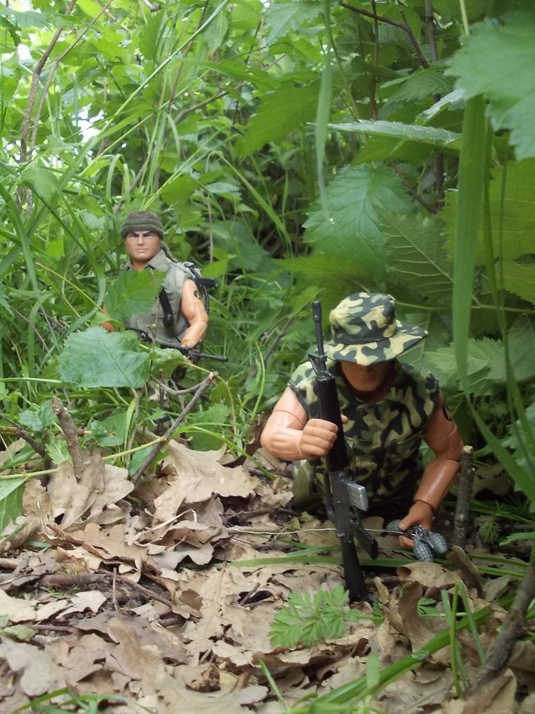 Jungle patrol DSCN0172_zpsba3b78e4