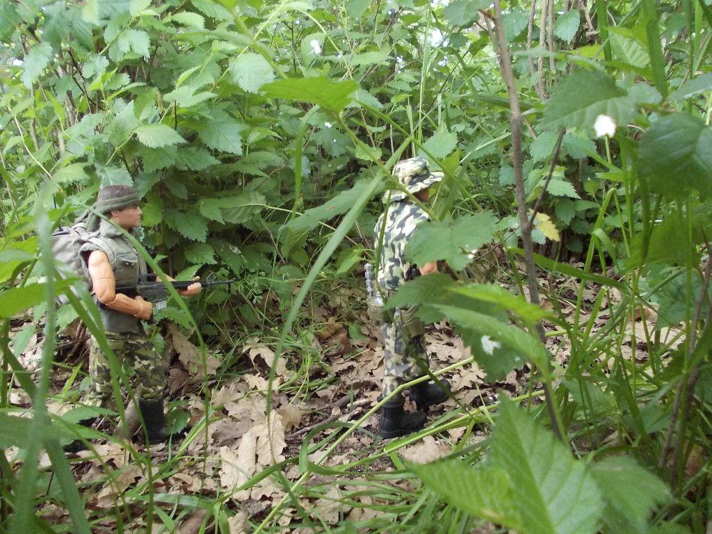 Jungle patrol DSCN0191_zps66901da6