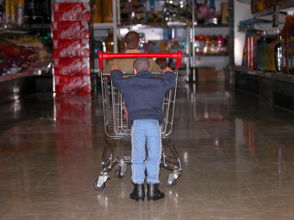 Adventuring at the supermarket DSCN7697_zps0b46b702