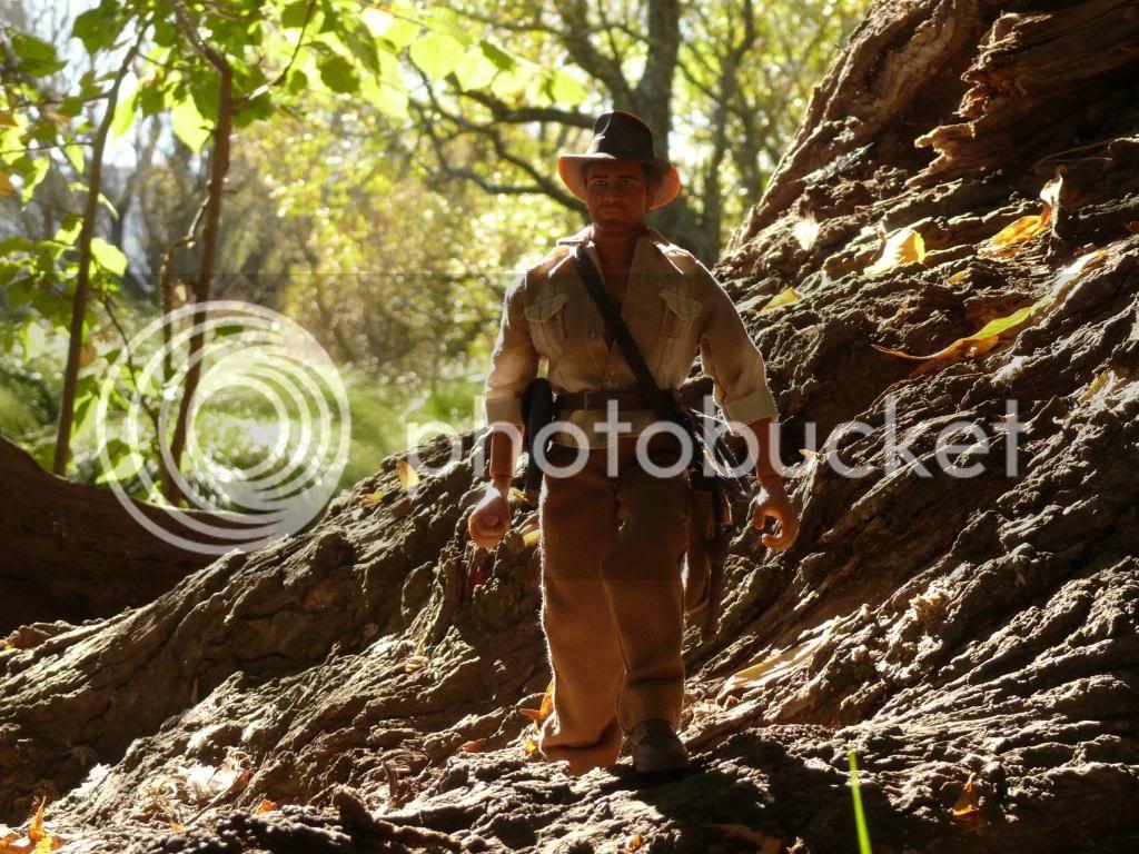 Mr Indiana Jones P1090406_zps19a7b861