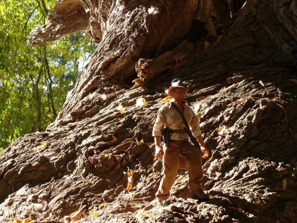 Mr Indiana Jones P1090410_zps4383d8f6